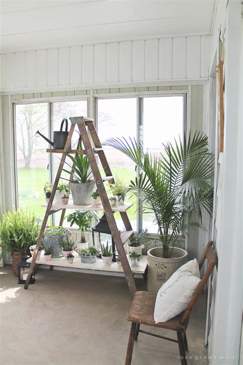 antique ladder shelving grows