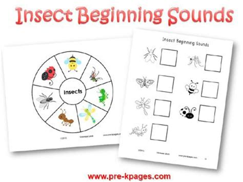 images of bee curriculum for preschool 17 best images about insects on pinterest eric carle