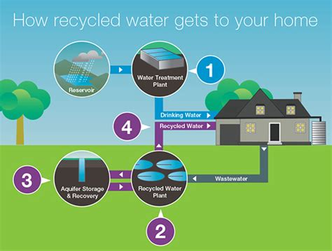recycled water city west water