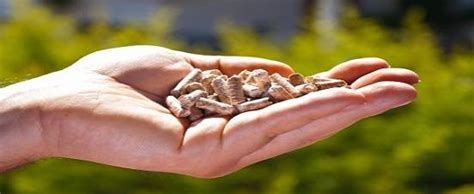 Csr Mba Skool by Corporate Social Responsibility Not An Option But An