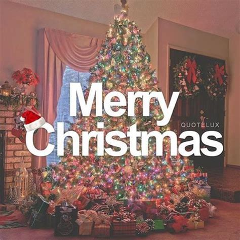images of christmas tree with quotes merry christmas quote with christmas tree pictures photos