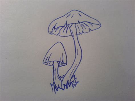 mushroom tattoo by purrfectlyflawed on deviantart