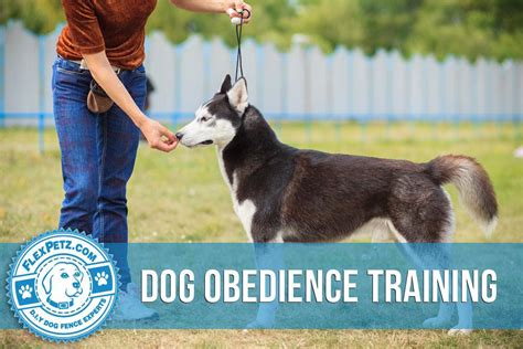 how does it take to obedience a obedience