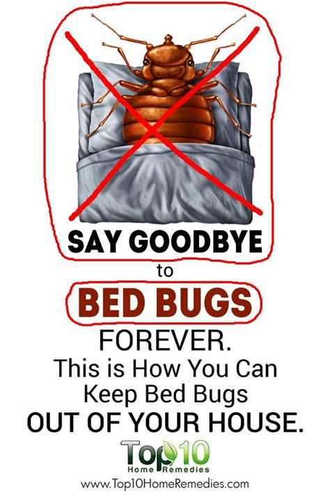 how to sleep with bed bugs here s how to take control get rid of bed bugs from your