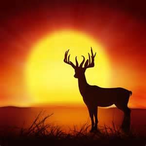 Animal Print Duvet Set Silhouette Of Deer With Big Sun Photograph By Setsiri