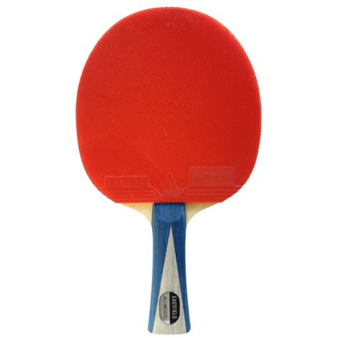 professional table tennis racket top 5 best table tennis paddles for beginners trusted