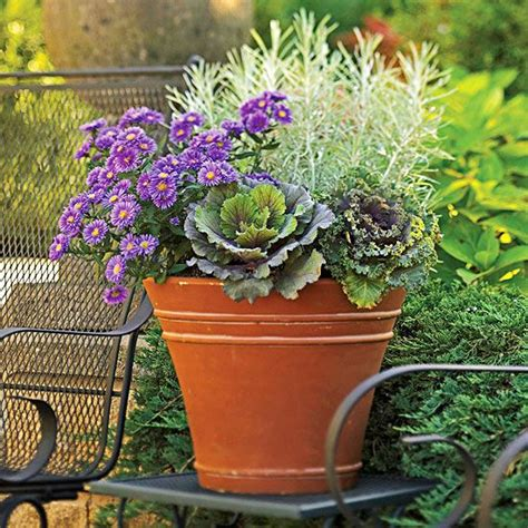 fabulous fall flower containers 25 best fall flower pots ideas on pinterest fall potted