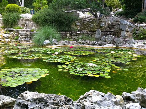 5 Healthy Paleo Travel Tips Austin Tx Grass Fed Girl Tx Botanical Gardens