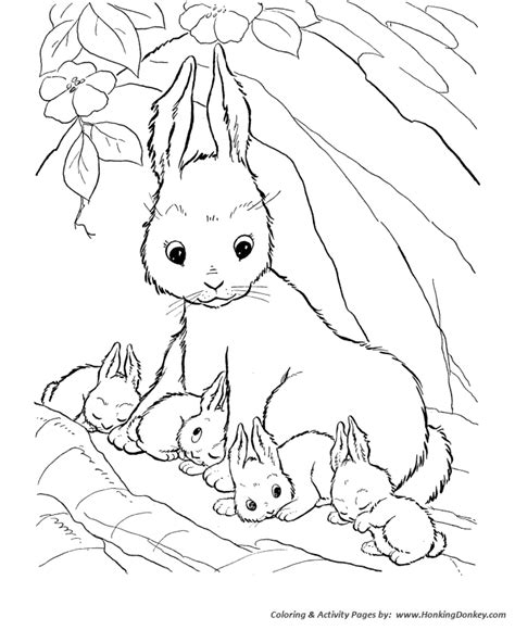 animal babies coloring page mother and baby animals coloring pages coloring pages baby