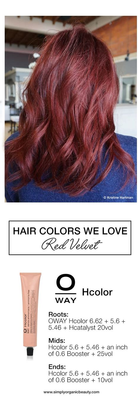 hair color formulas best 25 hair color formulas ideas on
