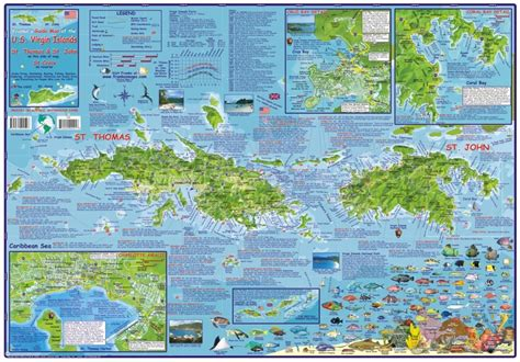 map of us and caribbean islands caribbean map us islands guide and dive laminated