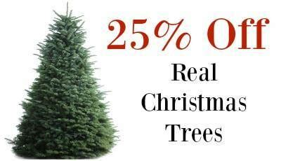 3ft real tree at lowes real tree deals lowe s sale with 25 fresh cut trees today only