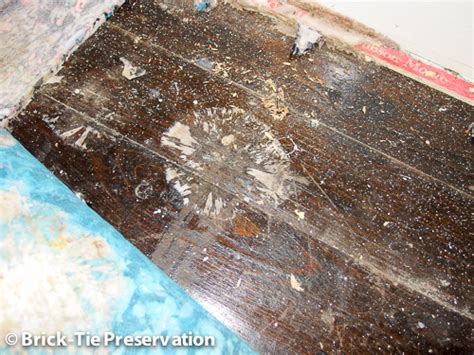buying a house with dry rot dry rot treatment sheffield south yorkshire brick tie preservation