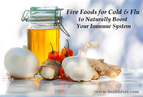 build your immune system fast proven immune boosters healthy anti cancer recipes homeopathic remedies probiotic yogurt recipes herbal tea and detox and strong immunity series volume 3 books five foods for cold and flu to boost your immune system