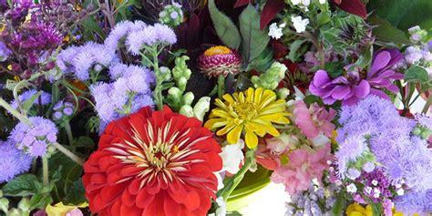 effetti fiori di bach fiori di bach cosa sono funzionano davvero