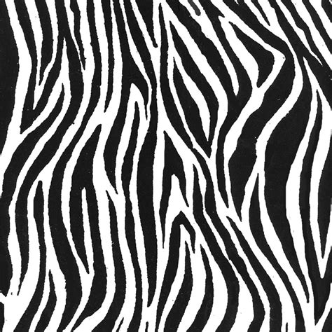 zebra pattern texture the gallery for gt zebra texture