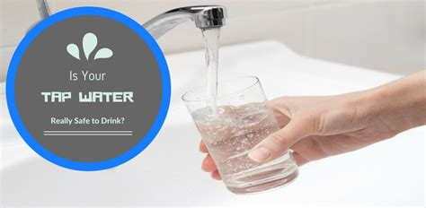 is it safe to drink sink water is my sink water safe to drink sinks ideas