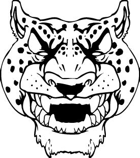 cheetah head coloring page how to draw cheetah head