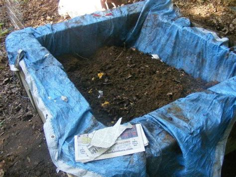how to make a worm bed how to make a worm bed making a worm bed kids and my project today graybeard