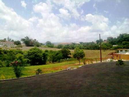 southern comfort guest house jamaica jamaica villa rentals