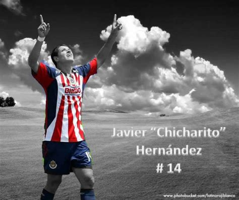 chicharito house chicharito chicharito photo 13814452 fanpop