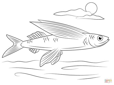 Flying Fish Coloring Page flying fish coloring page free printable coloring pages