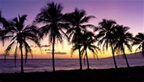microsoft beach themes desktop themes panoramic dual monitor windows