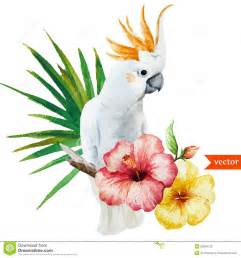white parrot hibiscus tropical palm trees flowers pattern wallpaper stock illustration
