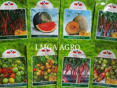 Benih Paprika Panah Merah cap panah merah lmga agro toko pertanian murah