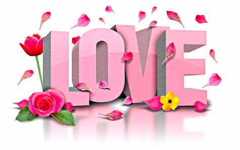 1428mb Pink Inlove pink flower shine glass new hd wallpapernew hd wallpaper