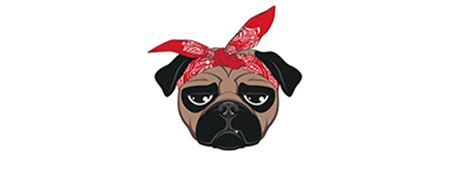 pugs names in the caign pug transparent png png mart