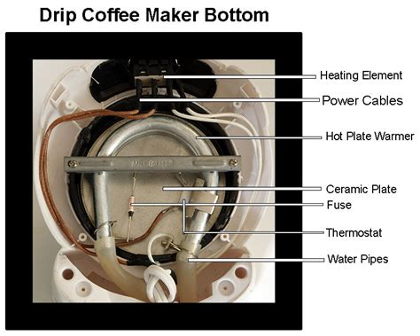 coffee maker wiring diagram wiring diagram schemes