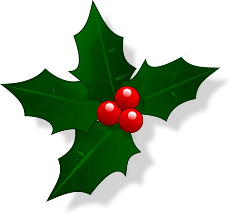 google images holly free vector graphic mail christmas holly xmas free