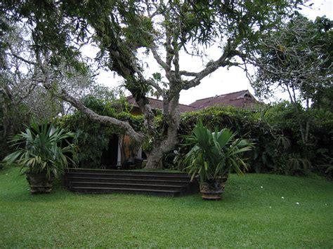 brief garden a bawa garden estate sri lanka tastetravel