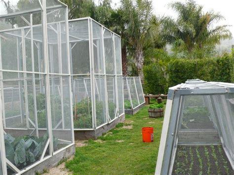 Garden Enclosure by 98 Best Images About Vegetable Garden Enclosures On