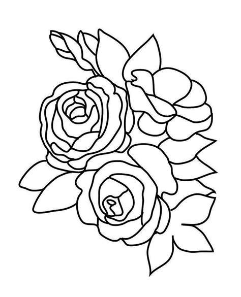 three roses and leaves and rose bud