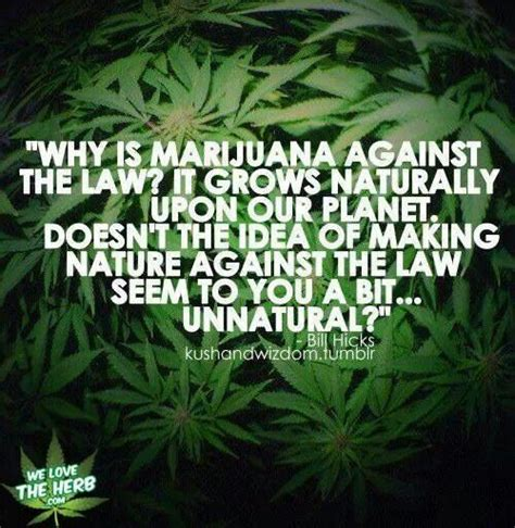 anti marijuana quotes quotesgram