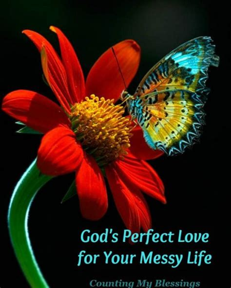 perfectly flawed the glued marriage loss and god volume 1 books quotes about god s for your
