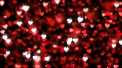 hearts background hearts falling glitter animation background loop clip