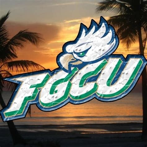 Fgcu Mba Cost by Pin By Marsha Sullivan Freeman On Sports