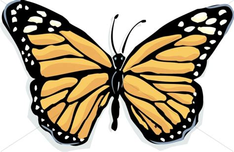 butterfly clipart butterfly clipart graphics images sharefaith 2 clipartix