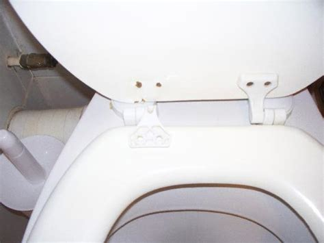 cracked glass toilet seat park hotel updated 2017 reviews price