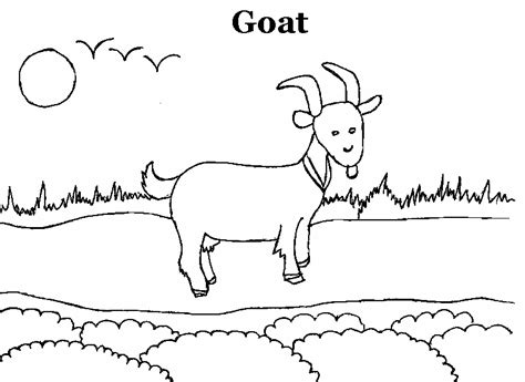 goat coloring printable page  kids