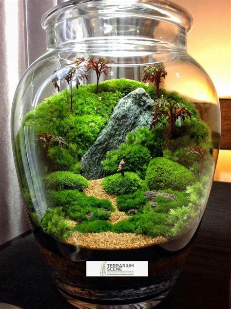fairy terrarium best 25 terrarium ideas on diy terrarium terranium ideas and terrarium diy