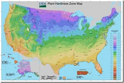 gardening zones australia pin by debra nugent on gardening