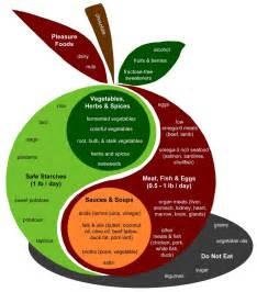 buchtipp perfect health diet das beste paleo 2 0 buch
