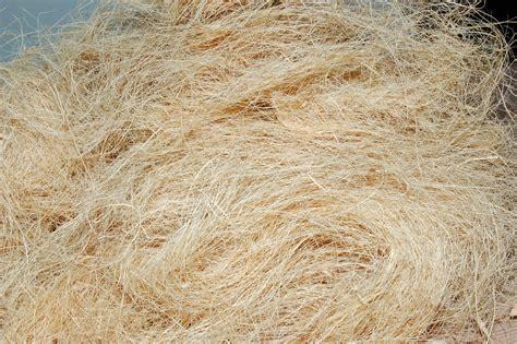 coco fiber cloud coir exports coimbatore tamilnadu india