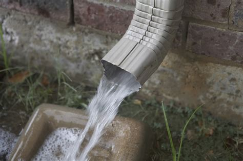 rain gutter   Gardening Projects, Plants and Landscaping Ideas
