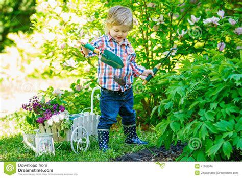 Gardening Needs Das In Den Garten Gr 228 Bt Stockfoto Bild 41161576