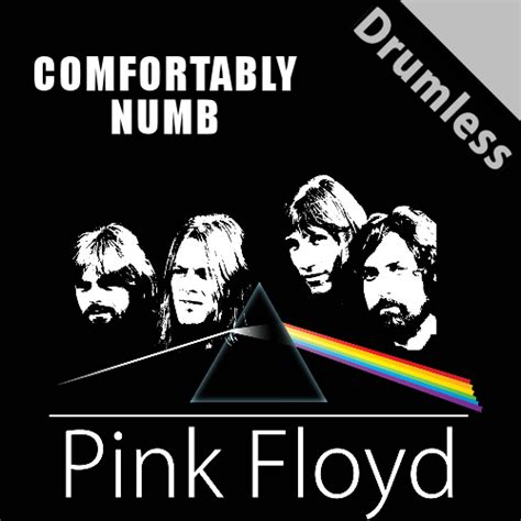 Pink Flyod Comfortably Numb by Comfortably Numb